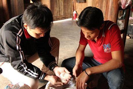Gao cuu doi cho dan tai dinh cu dam bao chat luong - Anh 1