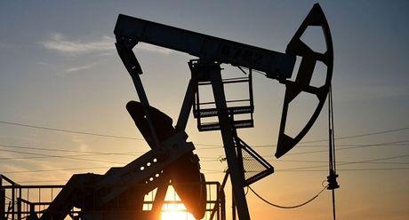 OPEC nhat tri cat giam san luong dau mo - Anh 1