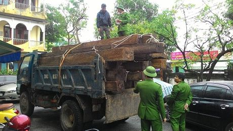 Quang Binh: Bat giu hon 5m3 go quy khong ro nguon goc - Anh 1