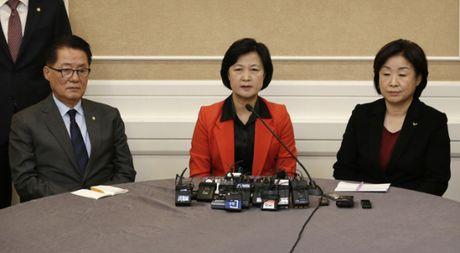 Phe doi lap Han Quoc nhat quyet luan toi ba Park Geun-hye - Anh 1