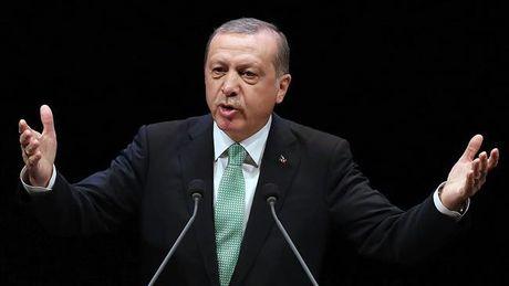 Erdogan thang thung noi vao Syria de lat do Tong thong Assad - Anh 1