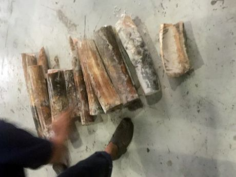 Nga voi tien ty trong than go lien tiep den Sai Gon - Anh 2