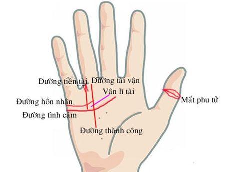 Giai ma tuong ban tay phu nu co van so de vuong mac vao vong lao ly - Anh 2