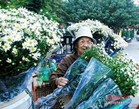 Diu dang cuc hoa mi Ha Noi vao Dong - Anh 3