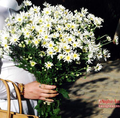 Diu dang cuc hoa mi Ha Noi vao Dong - Anh 7