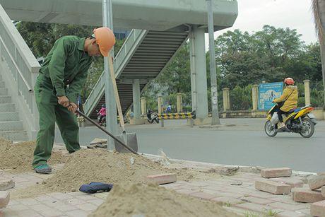 Can canh tuyen buyt nhanh BRT sap dua vao hoat dong o Ha Noi - Anh 9