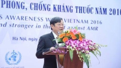 Mit-tinh phong, chong khang thuoc tai Viet Nam - Anh 1