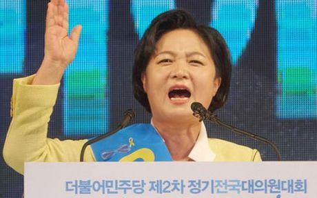 Cac dang doi lap Han Quoc thao luan thoi diem luan toi Tong thong - Anh 1