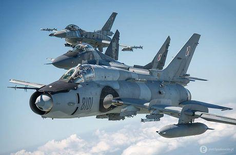 Chien dau co nao thay the MiG-29, Su-22 cua Ba Lan? - Anh 10