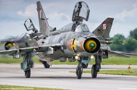 Chien dau co nao thay the MiG-29, Su-22 cua Ba Lan? - Anh 1