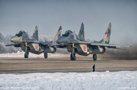 Chien dau co nao thay the MiG-29, Su-22 cua Ba Lan? - Anh 3