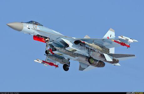 Chet me he thong huan luyen tiem kich Su-35 cua Nga - Anh 1