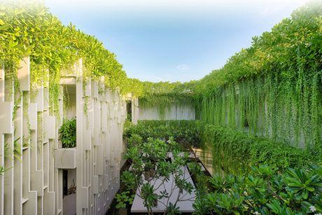 Den Naman Garden, tan huong thien duong nhiet doi - Anh 2