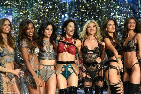 Can canh noi y Fantasy Bra 3 trieu do cua Victoria's Secret 2016 - Anh 8