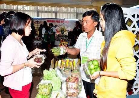 Ket noi cung cau hang hoa: Chia deu co hoi cho doanh nghiep Ha Noi va cac tinh - Anh 3