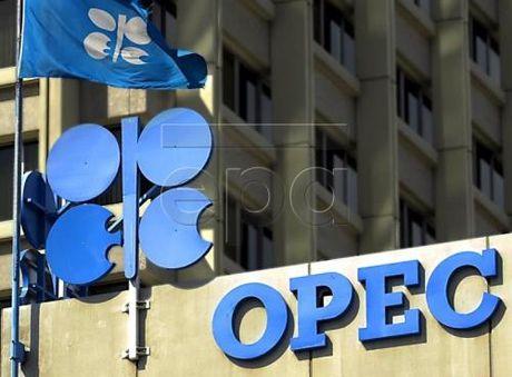 Thoa thuan cua OPEC van la luc day cho thi truong dau mo - Anh 1