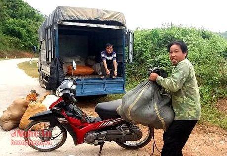 Vi sao nong san vung long ho thuy dien ban Ve het tut gia? - Anh 1