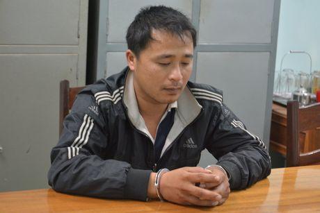 Bat 3 doi tuong chu muu vu pha rung phong ho - Anh 2