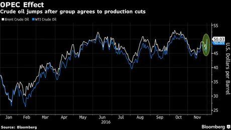 OPEC giam san luong, gia dau pha moc 50 USD/thung - Anh 2