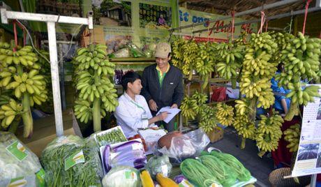 Ca kho Vu Dai, nho Ninh Thuan do bo 'khu nha giau' Ha Noi - Anh 4