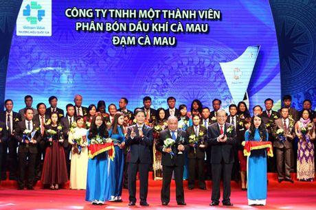 5 don vi nganh dau khi dat Thuong hieu quoc gia 2016 - Anh 2