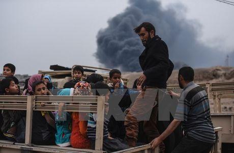 Lien hop quoc: Gan 2.900 nguoi thiet mang trong thang 11 tai Iraq - Anh 1