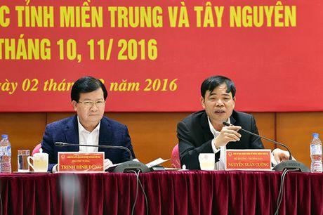 Nhieu bai hoc trong ung pho voi lu lut tai mien Trung, Tay nguyen - Anh 2
