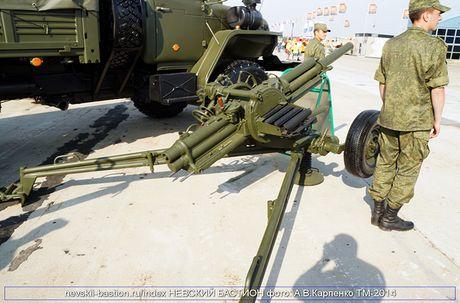 Tai sao Viet Nam nen thay coi 82mm bang vu khi nay? - Anh 9