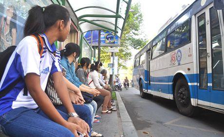 TP HCM chan chinh quan ly dua don hoc sinh bang xe buyt - Anh 1