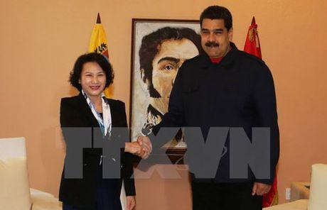 Viet Nam ung ho Chinh phu hop hien o Venezuela - Anh 1