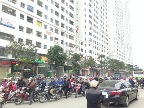 Chung cu 'to kien' 35-40 tang chi chit, do thi mau Linh Dam dang nghet tho - Anh 15