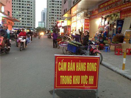 Chung cu 'to kien' 35-40 tang chi chit, do thi mau Linh Dam dang nghet tho - Anh 16