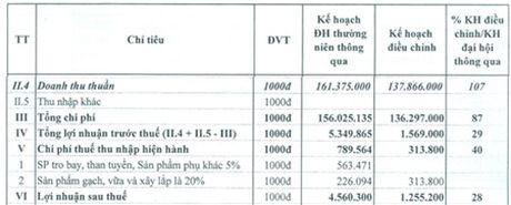SCL: Ke hoach lai rong 2016 giam hon 72% sau dieu chinh - Anh 1