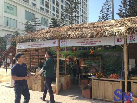 Hoi cho dac san vung mien Viet Nam 2016: Luong doi nhung chat chua doi - Anh 5