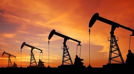 Gia dau cham dinh nho OPEC - Anh 1