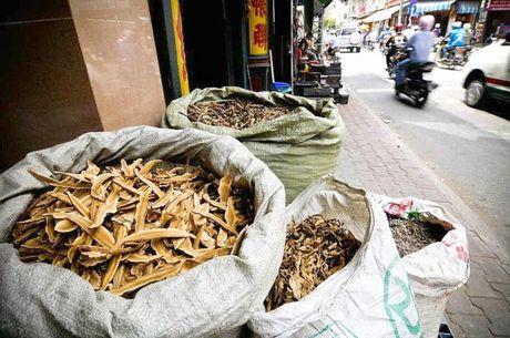 'Loan' duoc lieu nhap lau tai mot so cua khau - Anh 1
