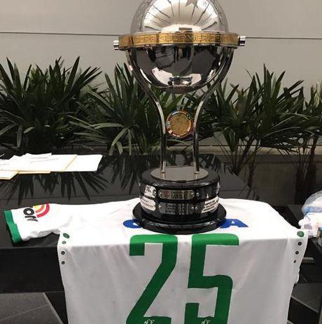 Nha vo dich nam 2015 trao cup cho Chapecoense - Anh 1
