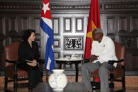 Toan canh: Chu tich Quoc hoi sang Cuba vieng Lanh tu Fidel Castro - Anh 14