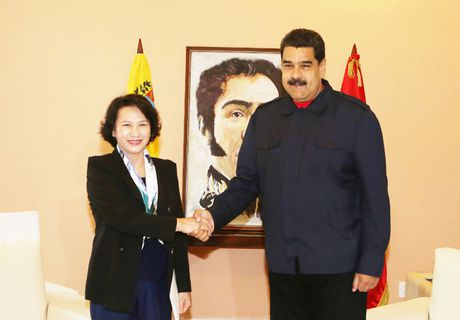 Toan canh: Chu tich Quoc hoi sang Cuba vieng Lanh tu Fidel Castro - Anh 18
