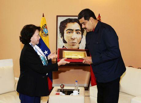 Toan canh: Chu tich Quoc hoi sang Cuba vieng Lanh tu Fidel Castro - Anh 20