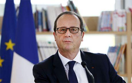 Tong thong Phap Hollande tu bo tham vong tai cu - Anh 1
