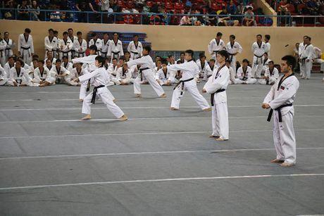 Taekwondo Viet Nam trien khai cac luat thi dau moi cua WTF cho cac HLV toan quoc - Anh 3