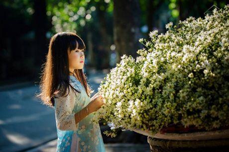 Me man ve dep cua nhung thien than nhi ben cuc hoa mi - Anh 2