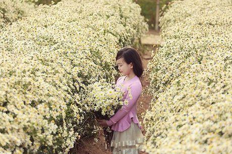 Me man ve dep cua nhung thien than nhi ben cuc hoa mi - Anh 8