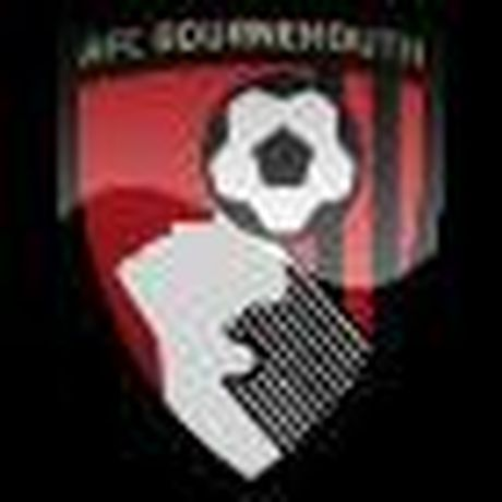 Chi tiet Bournemouth - Southampton: Hy vong tat ngam (KT) - Anh 1