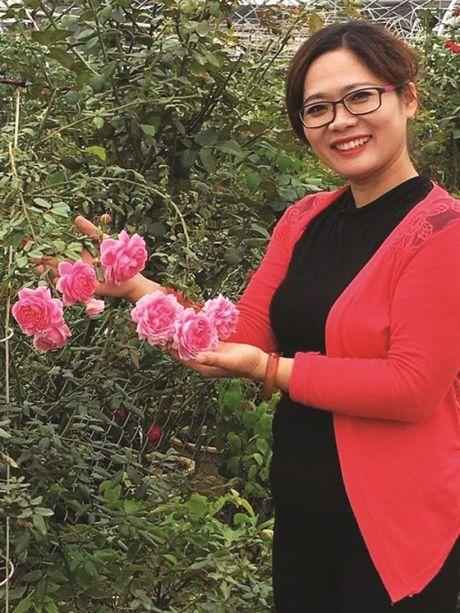 Thien duong hoa hong o Ha Noi - Anh 1