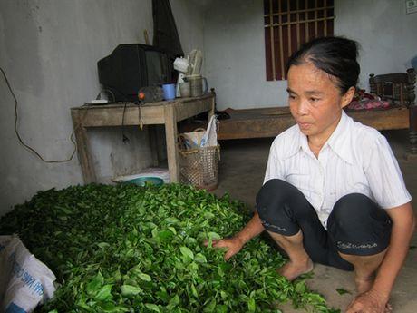 Nguoi dan ba mac benh ung thu nuoi chong ngay dai - Anh 2