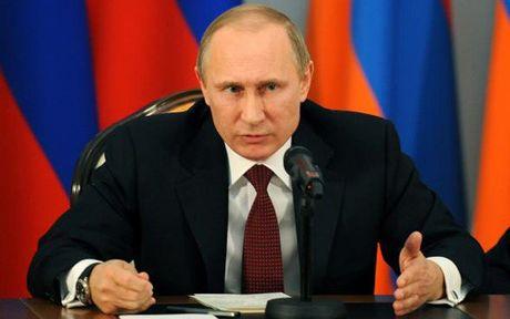 Putin: NATO dang 'loi keo' Nga vao cuoc doi dau - Anh 1