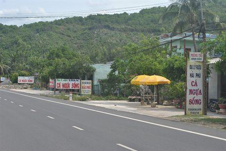 Tren cung duong than duoc 'ong uong ba khen' - Anh 3