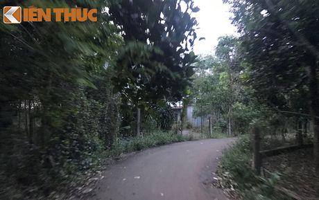Can canh nha xay dung trai phep cua quan tinh Dong Nai - Anh 3